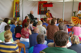 buddhism, shyalpa rinpoche, living fully, tibetan, happiness